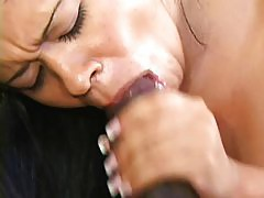 Exotic chick sucking giant cock