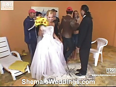 Thais sexy shemale bride