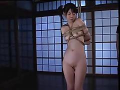 Flogging a Japanese M