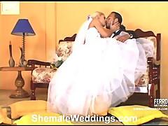 Thais hot shemale bride