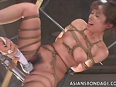 Mosaic: Japanese babe bond and dildoed